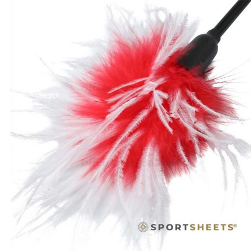S&M Whip & Tickle Red | Sportsheets