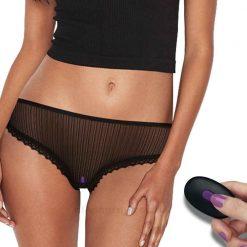 Remote Control Vibrating Panties On